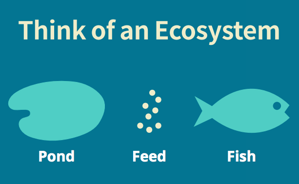 Think of an Ecosystem